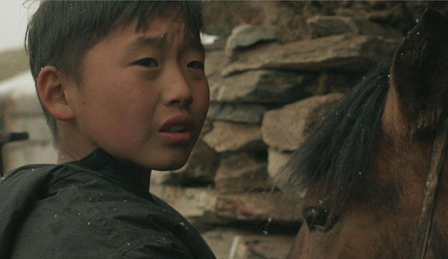 ZUD_01_Sukhbat_horse